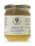 copy of Miele di Eucalipto...