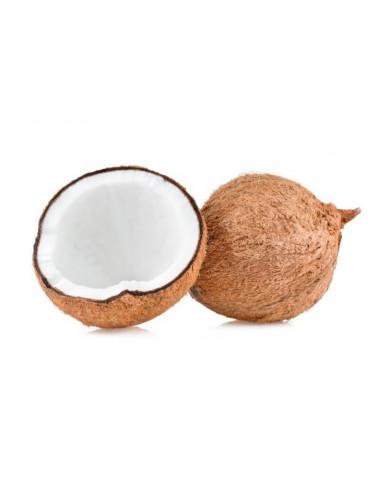 Coconut Gelato