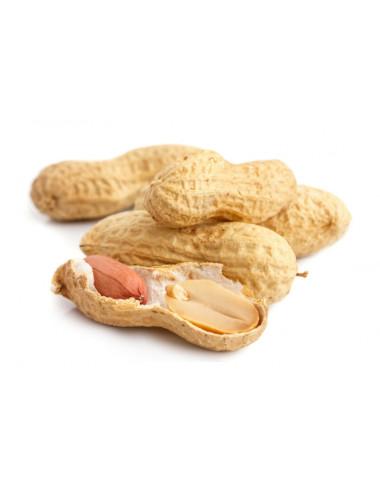 Peanut Gelato